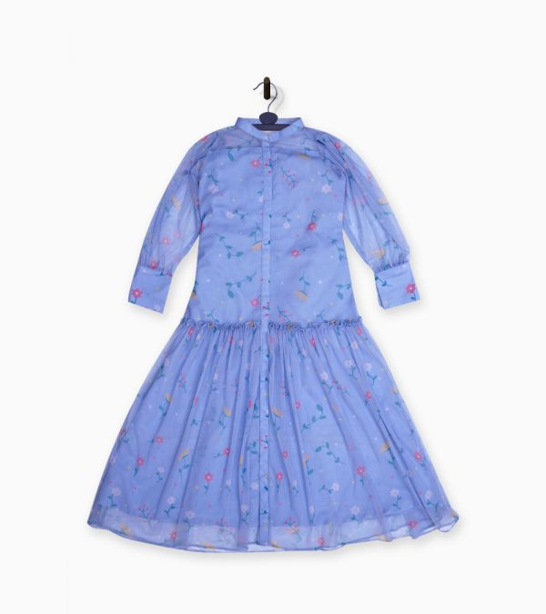 frock and frill dresses